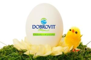 jajko dobrovit - gotowe